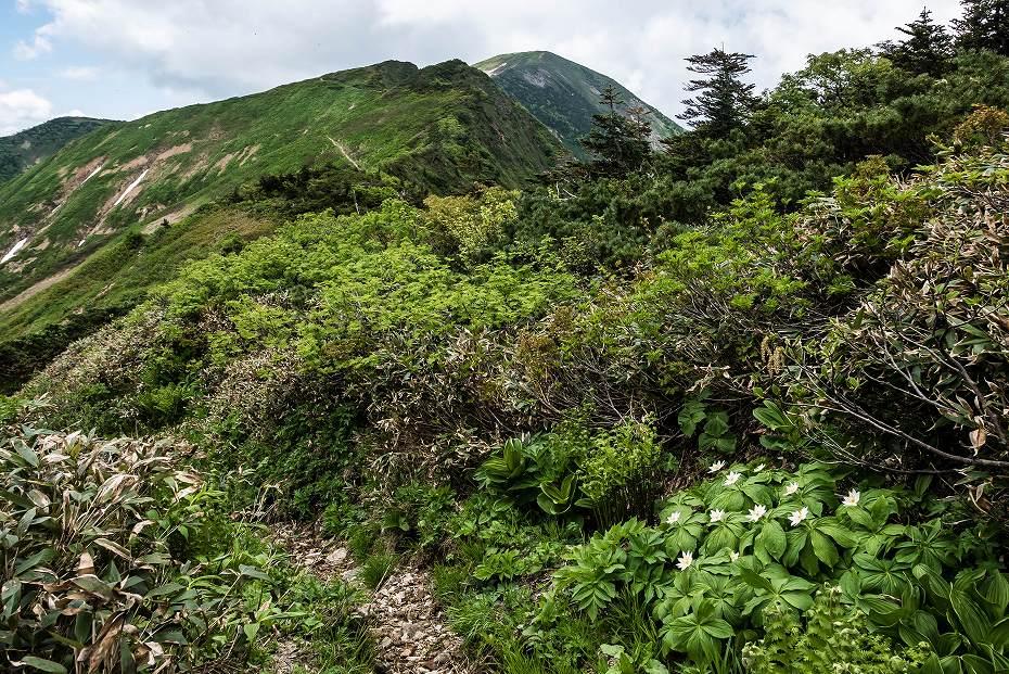 2016.06.27別山登山_天池~別山5