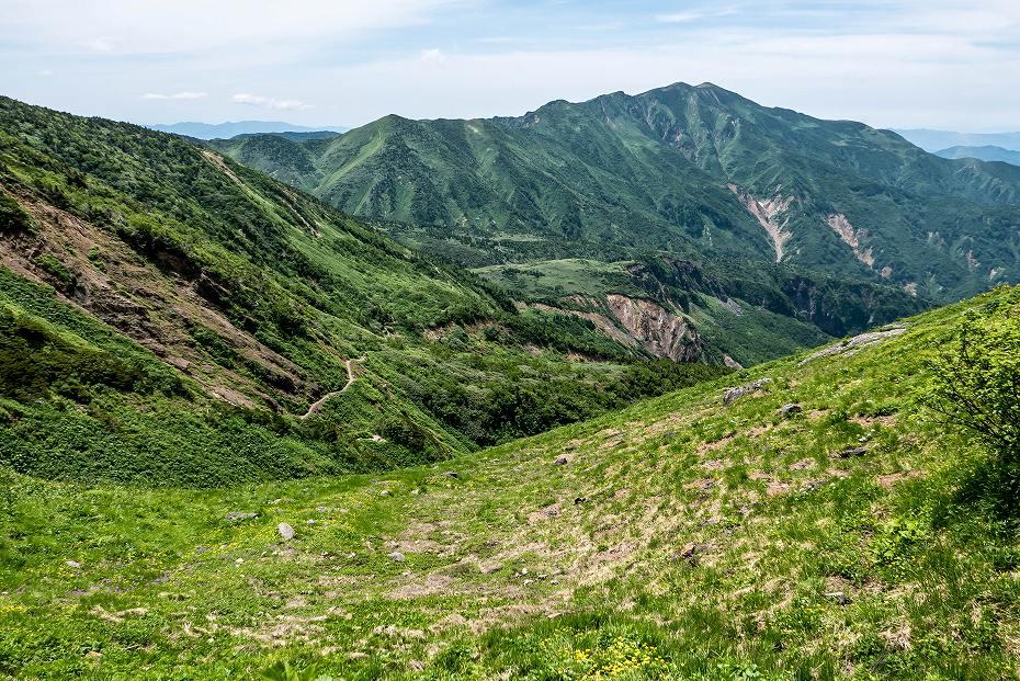 2016.07.11観光新道を彩る花たち24