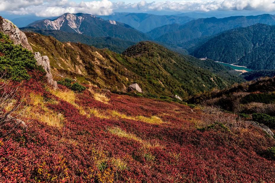 2016.10.07白山の紅葉30