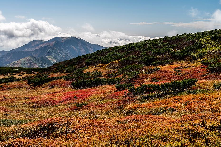 2016.10.07白山の紅葉23