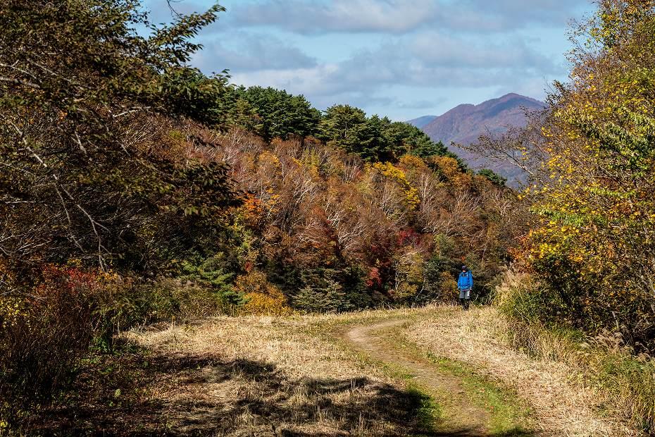 2016.10.21銅沼への道4