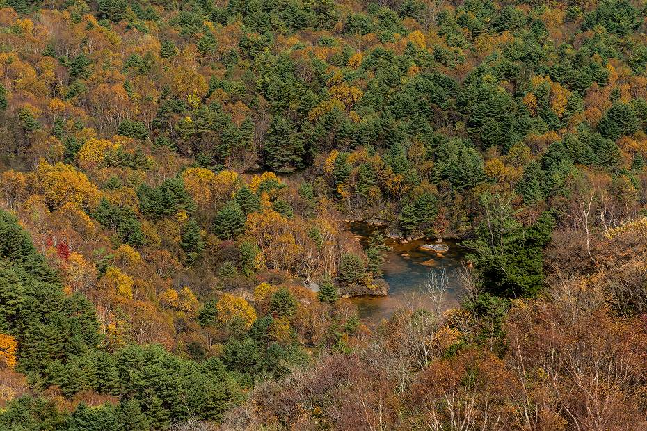2016.10.22雲海と紅葉 磐梯山28