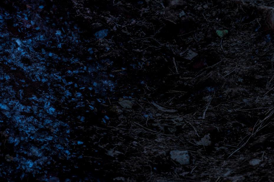2016.10.22雲海と紅葉 磐梯山13