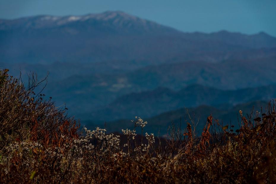 2016.10.22雲海と紅葉 磐梯山10