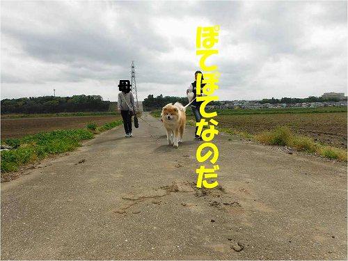 s-160501-1.jpg
