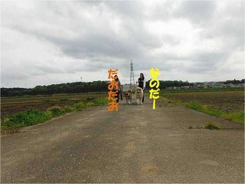s-160501-5.jpg