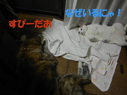 s-160815-2.jpg