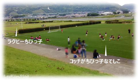201605219.jpg