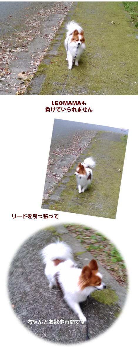 201605242.jpg