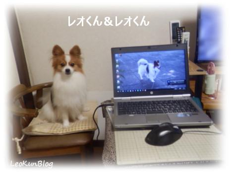 201607183.jpg