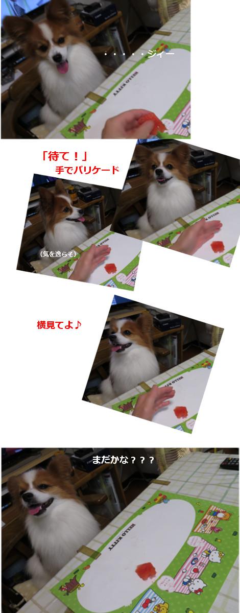 201608272f.jpg