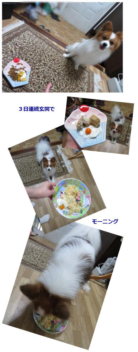 201609163.jpg