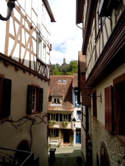 weinheim (7)