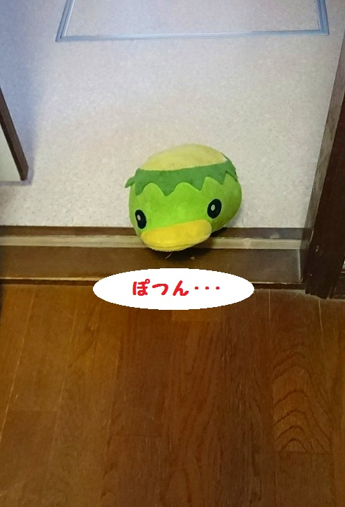 s-_20160412_200739.jpg