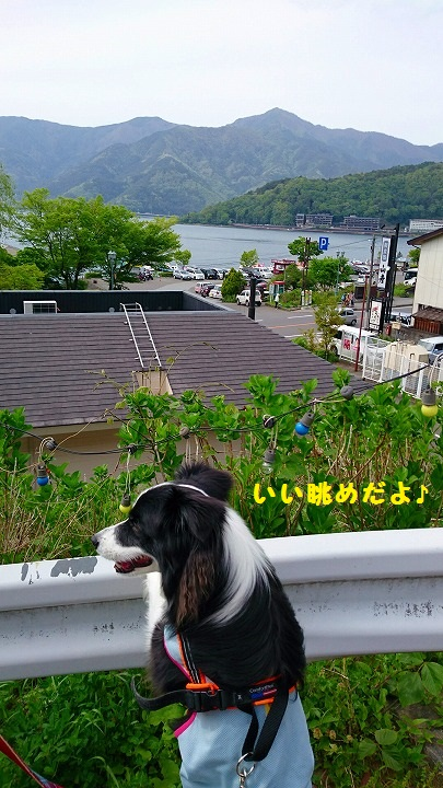 s-_20160510_183927.jpg