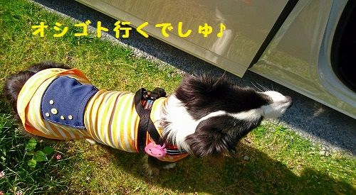 s-_20160524_182437.jpg