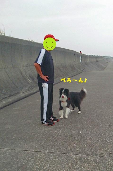s-_20160708_191747.jpg