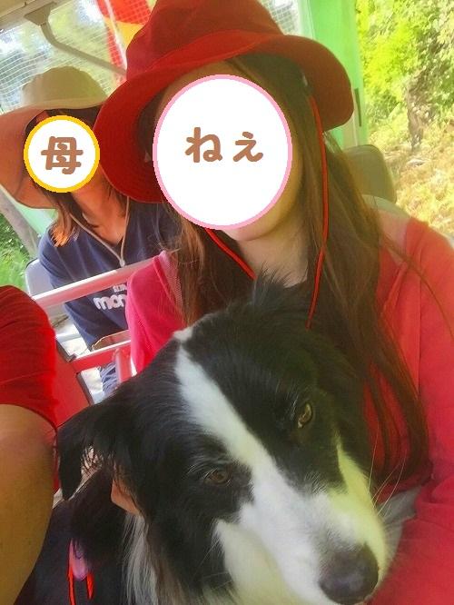 s-_20160728_192639.jpg