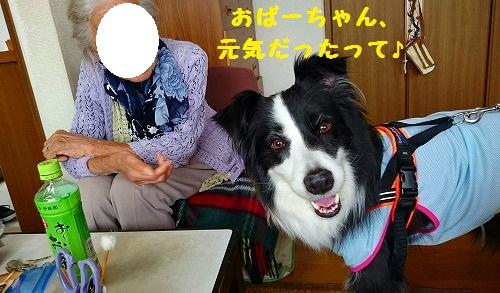 s-_20160816_194748.jpg