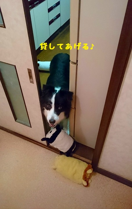 s-_20161006_132412.jpg