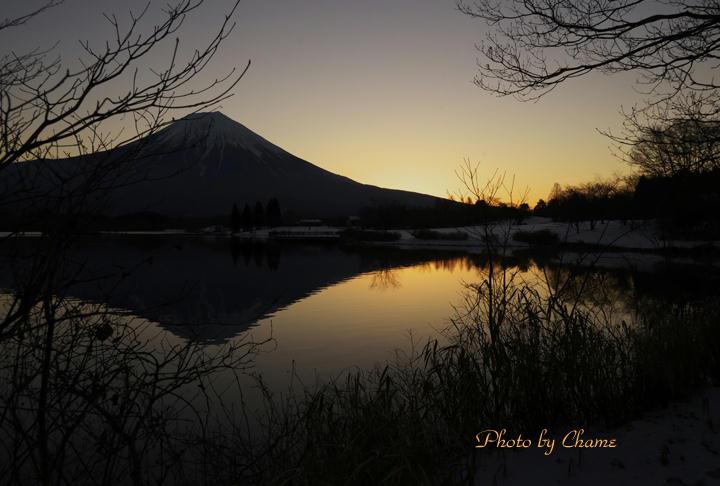 田貫湖-254