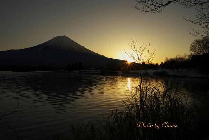 田貫湖-268