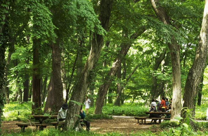 神代植物園-588-22