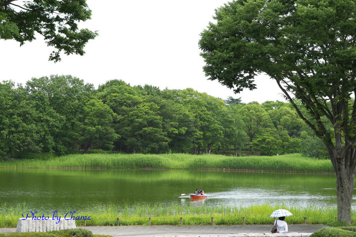 昭和記念公園-835