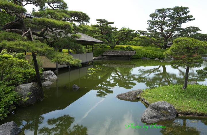 昭和記念公園-949
