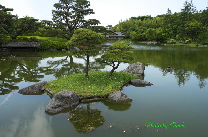 昭和記念公園-950