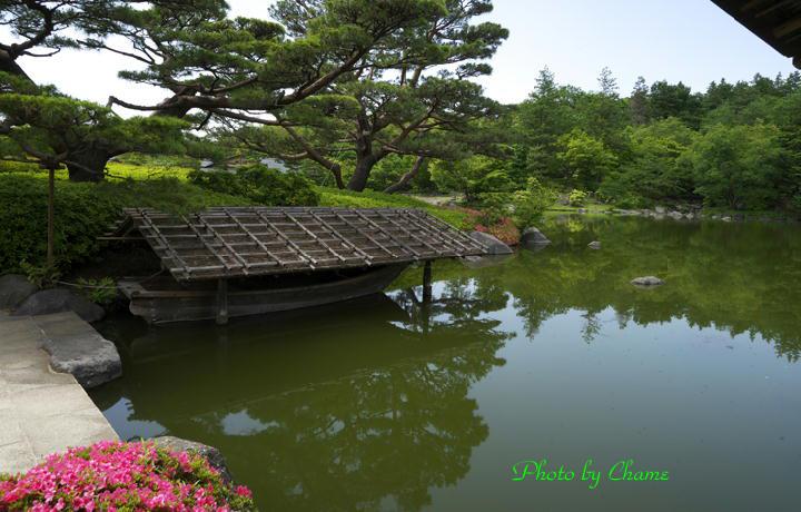 昭和記念公園-959