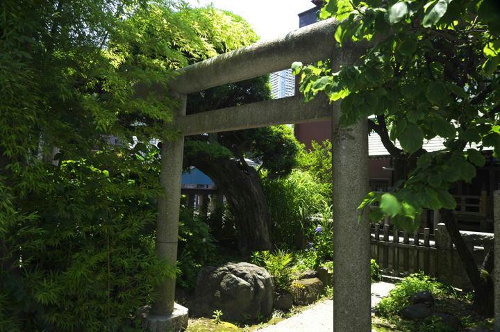 住吉神社-018