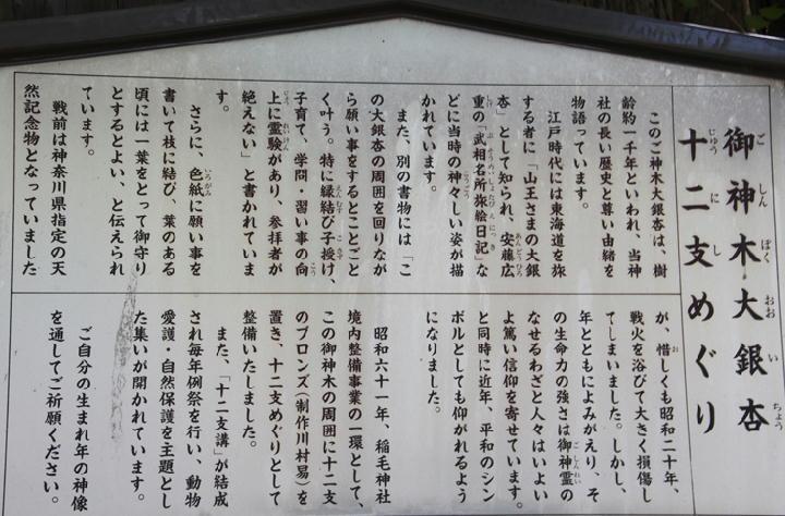 御神木-934-2