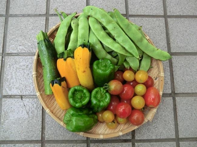 収穫822
