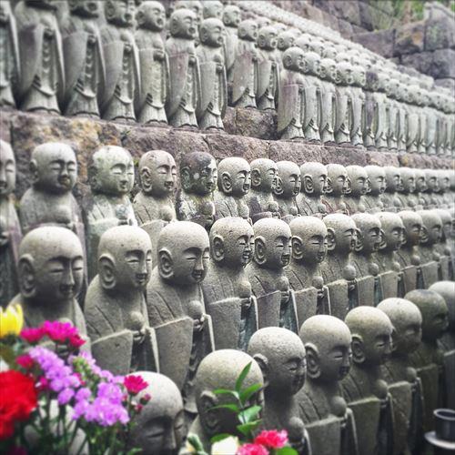 ゆうブログヶロブログ鎌倉2016春 (5)