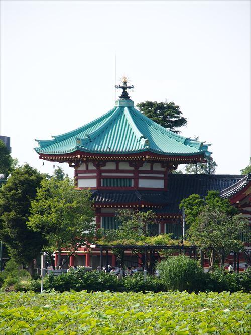 ゆうブログケロブログ上野ちゃらんぽ(8)