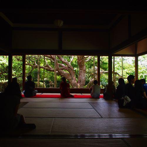 ゆうブログケロブログ京都2016 (5)
