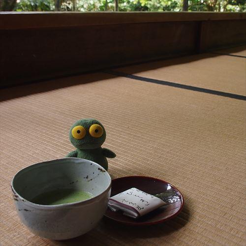 ゆうブログケロブログ京都2016 (6)