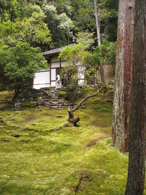 ゆうブログケロブログ京都2016 (28)