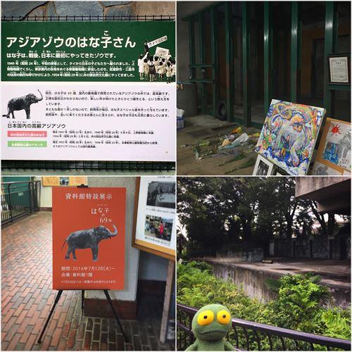 ゆうブログケロブログ井の頭公園で (3)