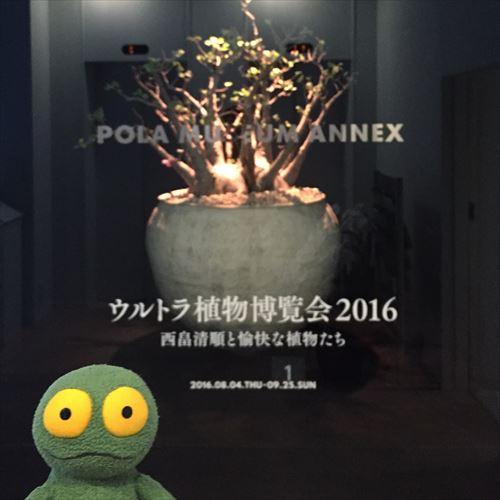 ゆうブログケロブログ銀座横浜とある一日 (3)