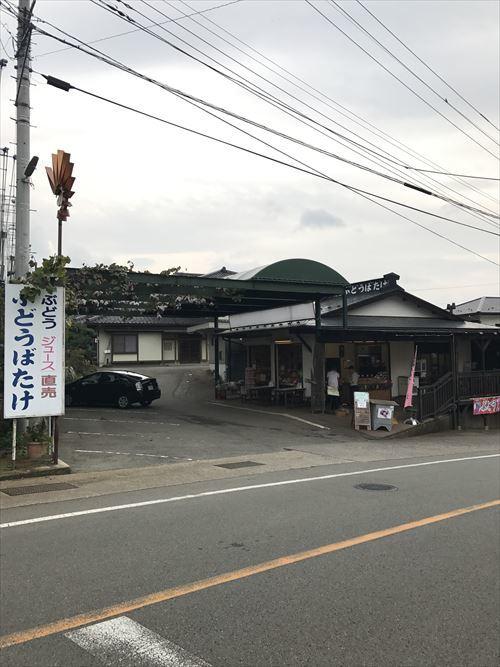 ゆうブログケロブログ勝沼2016秋 (2)