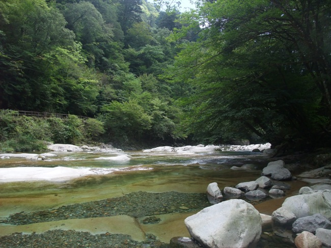 面河川の上流