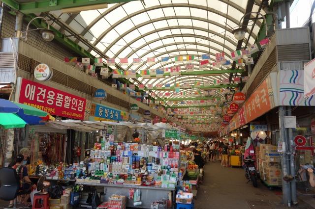 s-DSC00125korea.jpg