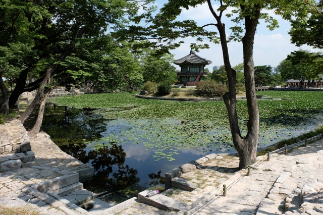 s-DSCF0029korea.jpg