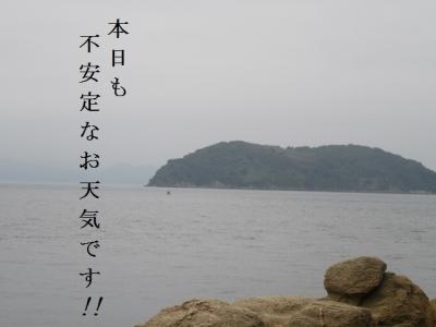 IMG_1377.jpg