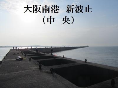 IMG_1456.jpg