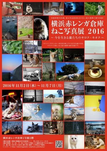 fc2blog_20161007173400e46.jpg