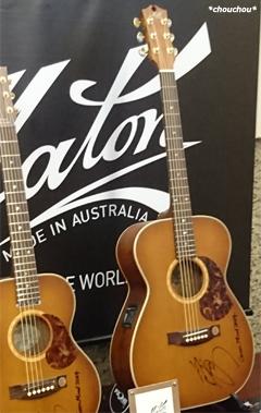 Maton ギター