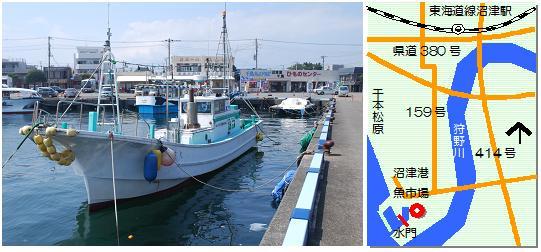 沼津港マップ